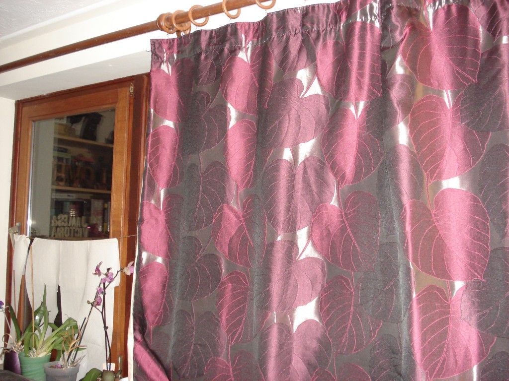 Autumn and curtains 040