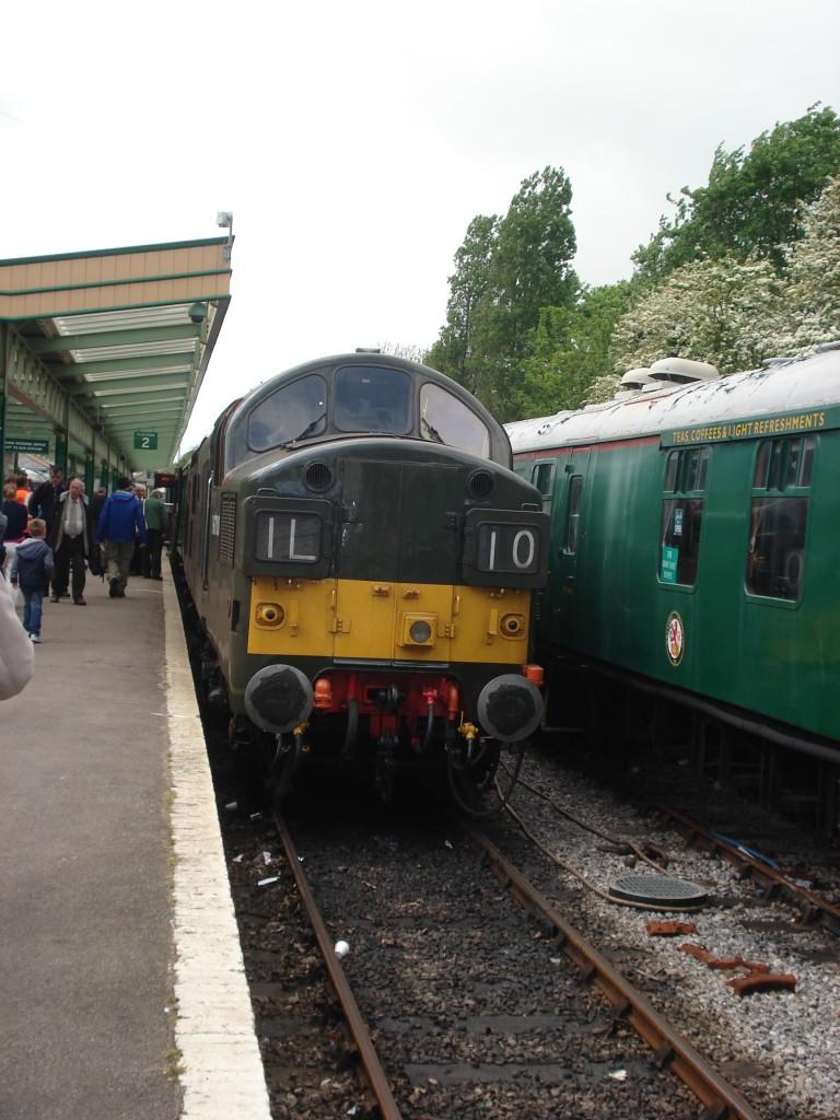 Dorset & Spike 032