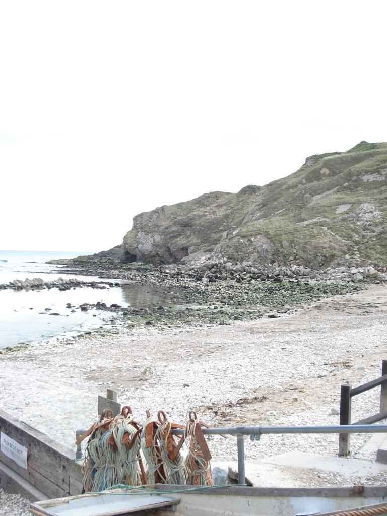 Dorset & Spike 079