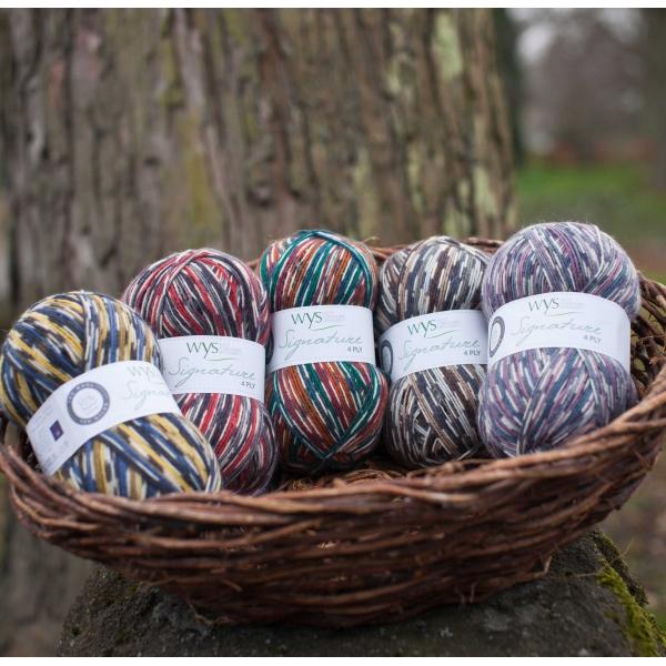 bird sock yarn