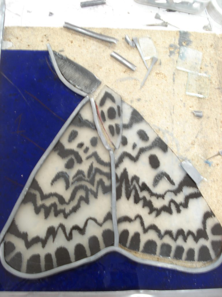 painted glass moth