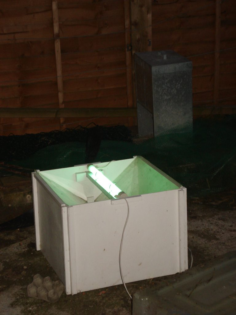 Moth trap on
